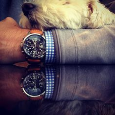 Puppy and a pilot's watch.