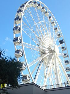 The Wheel in Surfers Paradise on the Gold Coast. Seems like many countries want a gigantic big wheel in their city. Check out Gold Coast's yourself! Head down to http://www.skiddoo.com.sg/ for cheap air tickets to Australia now!