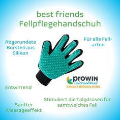 Mit diesem Handschuh striegeln sie nicht nur ihren Hund oder Katze sondern verwöhnen ihn auch gleichzeitig mit einer Massage