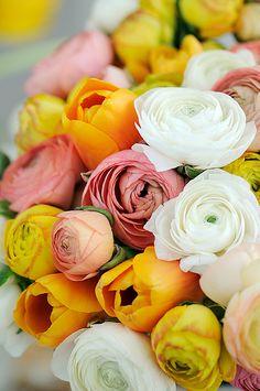 flowers-for-me Beautiful Flower Arrangements, My Flower, Beautiful Flowers, Same Day Flower Delivery, Ranunculus, Dahlias, Flower Boxes, Floral Bouquets, Planting Flowers