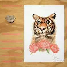 Tiger and Peonies - limited edition fine art giclee print by ellaquaint Tiger Fur, Coral Peonies, William Turner, Beautiful Patterns, Decor Styles, Giclee Print, Scandinavian, Illustrations, Watercolor