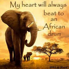 My heart will always beat to an African drum <3
