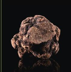 #ClippedOnIssuu from Cocina Modernista o Modernist Cuisine -- Oh I got truffles. Who could ask for anything more.
