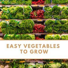 Easy Vegetables To Grow, Edible Garden, Vegetable Garden, Vegetable Gardening, Herb Garden