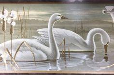 Wall Border Swans Lake Marsh Trumpet Majestic Gold Ivory York RS3615 B | eBay