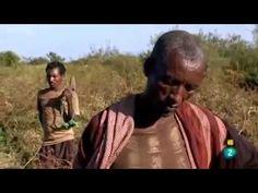Documental sobre agricultura globalizada (La 2 de RTVE) 54 minutos
