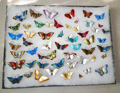 57 Enamel Butterflies by David Andersen Holth Prydyz Norway  