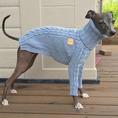 Italian Greyhound apparelhandmade knitwear-denim by inksWardrobe