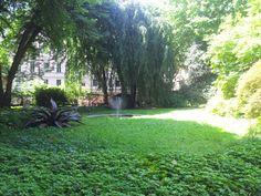 #Torino #green #heart