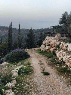 road to Emmaus, did not get to go there but would have loved to