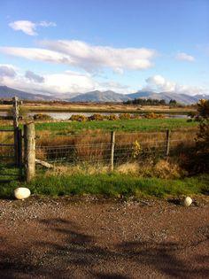 Capturing the beautiful scenery on Isle of Eriska on the West Coast of Scotland