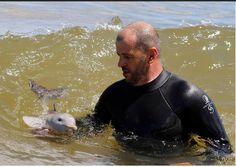 Baby dolphin!!!!! <3 <3 <3 <3