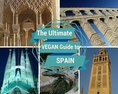 Everything you need to know to not just survive but thrive as a vegan in Spain, including naturally vegan tapas and other dishes as well as useful phrases.