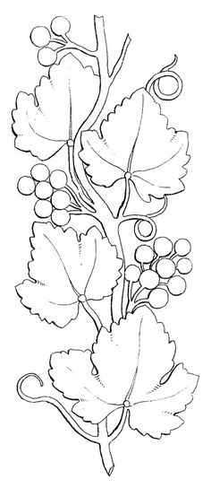 A lovely pattern for a cheese board. Stencil Templates, Stencils, Stencil Wood, Embroidery Stitches, Embroidery Patterns, Vine Drawing, Wood Burning Patterns, Bottle Painting, Stained Glass Patterns