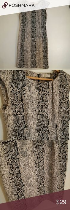 Calvin Klein Snakeskin Dress Flattering work dress, hits just at knees or mid-knee, and fits amazingly. Great condition, except one small brown dot (shown). The background is in between a cream and an off white. Calvin Klein Dresses Midi