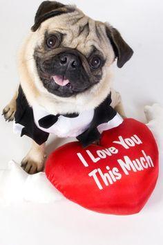 happy valentines to best friend