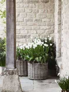 Thrilling About Container Gardening Ideas. Amazing All About Container Gardening Ideas. Back Gardens, Small Gardens, Outdoor Gardens, Home Decor Baskets, House With Porch, White Gardens, Garden Cottage, Garden Planters, Wall Planters