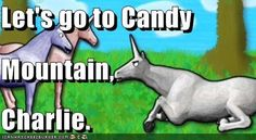 Charlie The Unicorn. BHAHAHAHA totally remember this it's so stupid it's hilarious Candy Mountain Charlie, Funny Me, Hilarious, Charlie The Unicorn, Funny Images, Funny Pictures, Llamas With Hats, I Love To Laugh, Look At You