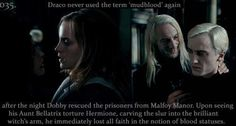 """Sau cái đêm mà Dobby giải cứu những tù nhân từ phủ nhà Malfoy, Draco đã không dùng từ """" Máu bùn"""" thêm lần nào nữa. Sau khi chứng kiến dì Bellatrix của mình tra tấn Hermione, để lại vết nhơ trên cánh tay của một phù thuỷ thiên tài, cậu ta đã ngay lập tức mất hết niềm tin vào cái ý niệm dòng máu thuần."""