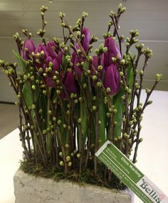 Modern Flower Arrangements Centerpieces Find This Pin And More On Modern Floral Designs Interesting Arrangement With Tulips Modern Flower Arrangements Miami Modern Flower Arrangements With Bamboo