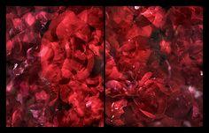 Rosa Plenteous Red Wool Coat, Auburn Hair, My Favorite Color, Earth, Flowers, Pink, Chestnut Hair, Royal Icing Flowers, Flower