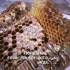#витебск #belarus #беларусь #мед #пчелы #улей #смоленск #великиелуки # # #мёд #vitebsk #беларусь #blr #орша # #russia  #bee #россия #bees #honey  #beekeeping #swarm   #псков #by  #buzz #honeybee  #віцебск #москва #beekeeper #biene