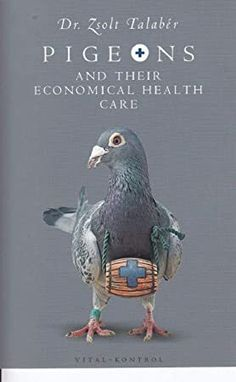 Get Book Pigeons and their Economical Health Care (pigeonbooks) Author Zsolt Talaber, Got Books, Books To Read, Sidney Blumenthal, Sarah Cunningham, Pigeon Books, Rachel Carter, Michael Collins, What To Read, Book Photography
