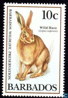 Postage Stamps - Barbados [BRB] - Protected animals