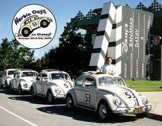 vw Herbies! Herbie Days