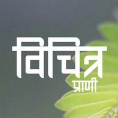 Hindi swaggg