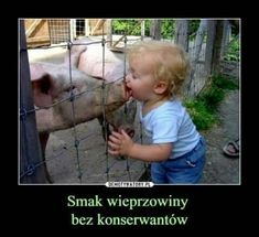 Kid Meme - Find funny kids photos to brighten your day and get a laugh! Browse our kids gifs, funny videos of kids and more! Funny Babies, Funny Kids, Cute Kids, Funny Toddler, Bacon Funny, Bacon Bacon, Bacon Memes, Bacon Bits, This Little Piggy