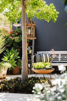 raised planter in garden. collected interiors.