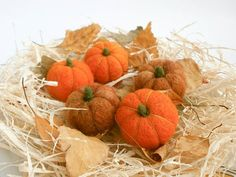 Hey, I found this really awesome Etsy listing at https://www.etsy.com/listing/201478200/set-of-five-felted-mini-pumpkins