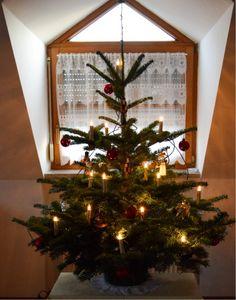 Unser Christbaum erzählt Reisegeschichten   ... #christbaum #weihnachtsbaum #reisegeschichten
