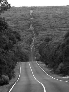 Road on Kangaroo Island, Australia. Kangaroo Island is Australia's third-largest island, after Tasmania and Melville Island. It lies in the state of South Australia 70 miles southwest of Adelaide. Kangaroo Island, Places To Travel, Places To See, Travel Destinations, Wonderful Places, Beautiful Places, Amazing Places, Amazing Photos, Beautiful Roads