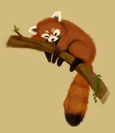 Red Panda by Gabby Zapata