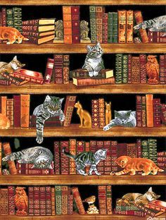"""Cats in the Library - 24"""" x 44"""" PANEL - Quilt Fabrics from www.eQuilter.com Cat Quilt Patterns, Pattern Blocks, Patchwork Patterns, Book Quilt, Applique Quilts, Quilting Designs, Quilting Projects, Art Quilting, Quilting Ideas"""