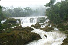 Causas Verdes las Nubes Chiapas by Mel Figueroa
