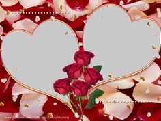 beautiful horse frames for pictures Valentine Day Photo Frame, Valentines Day Photos, Flowery Wallpaper, Flower Phone Wallpaper, Love Images, Love Photos, Best Photo Collage, Photo Collages, Wallpaper Gratis