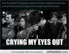 After the battle of Hogwarts