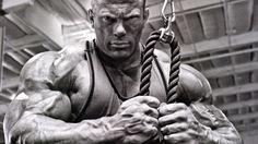 Protocolo HSN: Ganar músculo sin apenas grasa PARTE I   HSN Blog