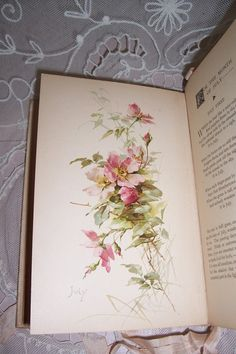 RARE VICTORIAN 1894 BOOK W/12 C.KLEIN FLOWER COLOR LITHOGRAPHS...ROSES