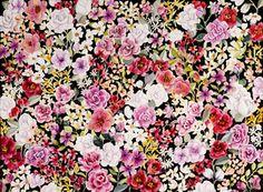 karla pruitt - camellias