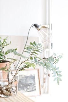Stunning German Home   Studio Oink