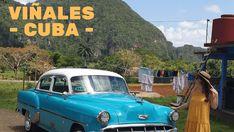 Viñales, em Pinar del Rio - Cuba © Viaje Comigo Vinales, Cuba, Traditional Homes, Bullock Cart, Boating