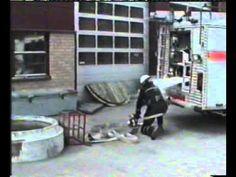 fireman accident