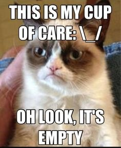 this is my cup of care. oh look, it's empty - grumpy cat!