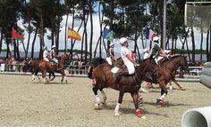 Horse-ball: tension sur la grande carrière d'Aquitaine