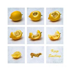 Keep Smiling. Collage of eight photographs of a lemon which is eaten bite by bite to the seeds. Imagine that face during this life-affirming procedure. Nevertheless, keep smiling! - Keep smiling - it takes 10 years off! (Jane Birkin) - People seldom notice old clothes if you wear a big smile. (Lee Mildon) - Before you put on a frown, make absolutely sure there are no smiles available. (Jim Beggs)
