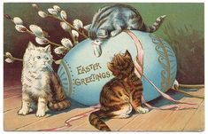 Easter Cat | 2013 Top 25 Cure Easter Day Wallpapers for Android Phones ...